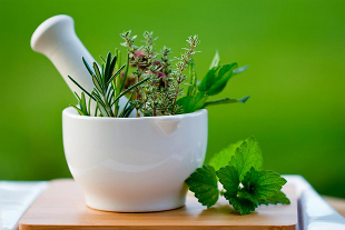 How to deal with the disease with the help of herbs